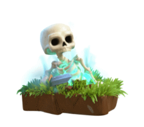 Skeleton_info.png